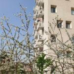 La Hêtraie Paris Habitat – Limeil-Brévannes (FR) @ Rethink